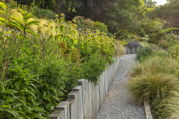 SOUTH HAYES, OXFORD: DESIGNER SARAH NAYBOUR: GARDEN ON A SLOPE - GRAVEL PATHS, STIPA TENUISSIMA. SLOPING, SLOPES, OAK SLEEPERS, PHLOMIS RUSSELIANA